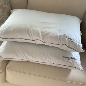 NEW Set of 2 Pillows